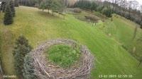 Strzelce - Stork's nest