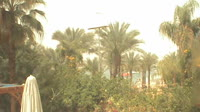 Sharm el-Sheikh - Helnan Marina